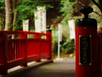 森の記念橋
