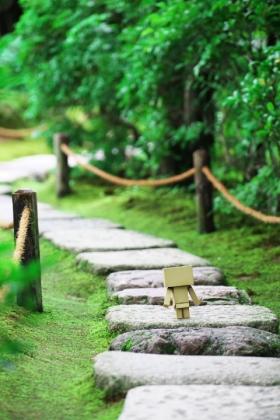 石の道を渡って