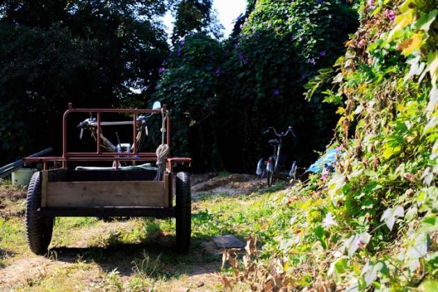 田舎の働きモノ