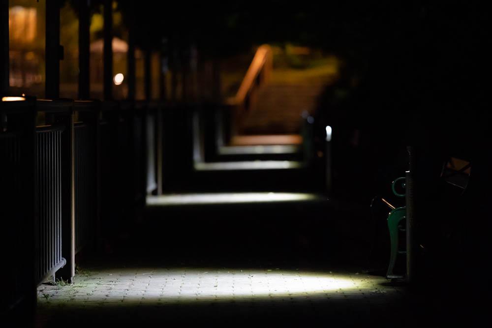 灯りが示す道