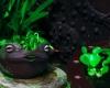 緑になりたいカエル